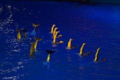 018-oceanografic2009avond