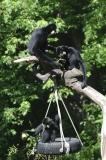 023-zoowarschau2011