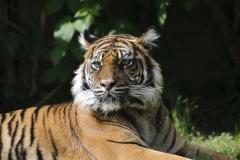 024-zoowarschau2011